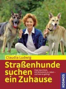 Stra 223 Enhunde Suchen Ein Zuhause Hundewelt At