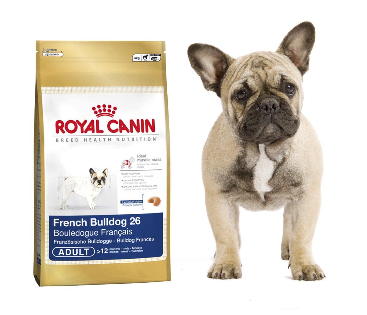 neu von royal canin rasseprodukte f r dalmatiner und franz sische bulldoggen. Black Bedroom Furniture Sets. Home Design Ideas